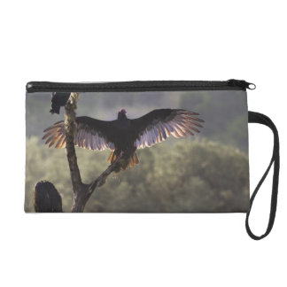 Buzzards' Roost near Leaky, Texas Wristlet Clutches