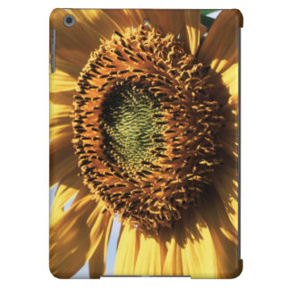 California, A Mammoth Sunflower (Helianthus) 1 iPad Air Cover