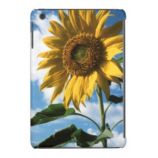 California, A Mammoth Sunflower (Helianthus) 2 iPad Mini Cover