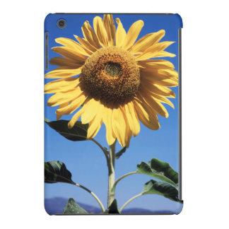 California, A Mammoth Sunflower (Helianthus) 3 iPad Mini Retina Cover