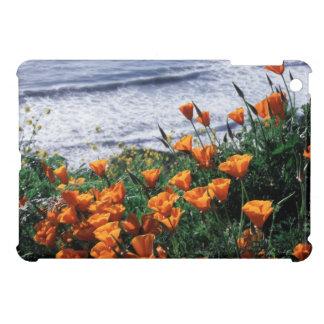 California, Big Sur Coast, California Poppy iPad Mini Cover