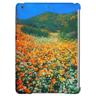 California Poppies and Popcorn wildflowers
