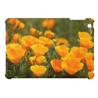 California poppies, Montana de Oro State Park Cover For The iPad Mini