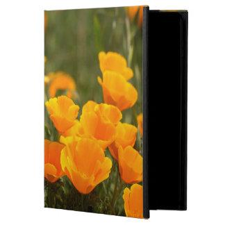 California poppies, Montana de Oro State Park iPad Air Case