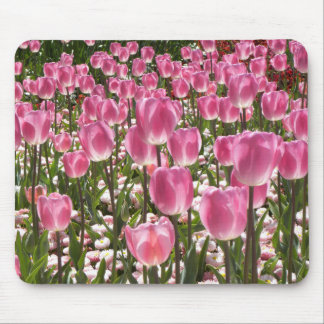 Canberra Tulips Mouse Pad