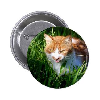 Cat in grass 6 cm round badge