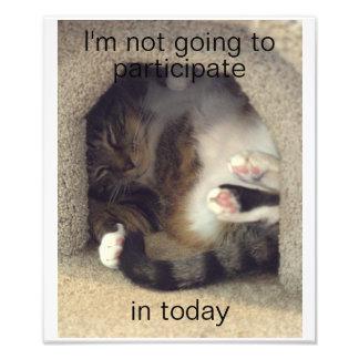 Cat in Weird Position Photo Art