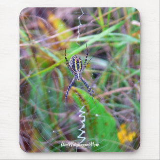 Cattail Spider Mouse Pad