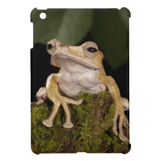 Central PA, USA,. Borneo Eared Frog; Cover For The iPad Mini