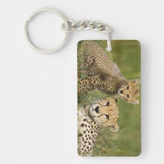 Cheetah, Acinonyx jubatus, with cub in the Double-Sided Rectangular Acrylic Key Ring