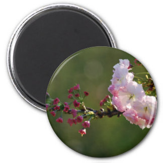 Cherry blossom and meaning 6 cm round magnet