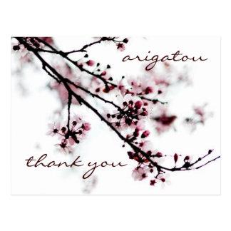 Cherry Blossom Thank You Postcard