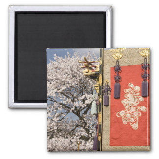 Cherry blossom tree and silk tapestry of square magnet