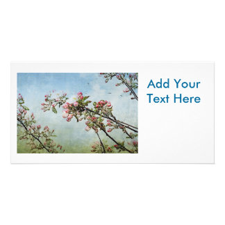 Cherry Blossoms Customised Photo Card