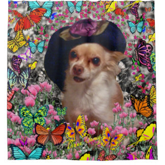 Chi Chi in Butterflies, Chihuahua Dog in Cute Hat Shower Curtain