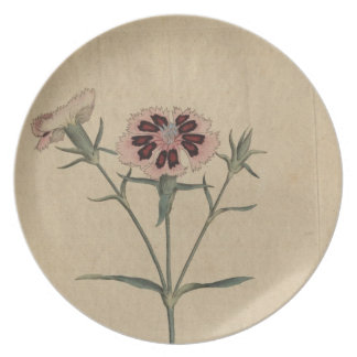 China India Pink Flower Dinner Plate