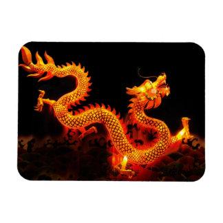 Chinese Dragon Lantern Rectangular Photo Magnet
