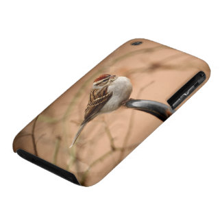 Chipping Sparrow Case-Mate iPhone 3 Case