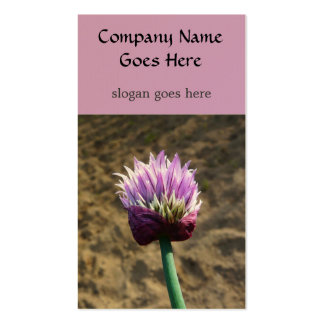 Chive Herb  Flower Bloom Pack Of Standard Business Cards