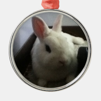 Christmas Rabbit Silver-Colored Round Decoration