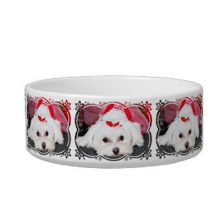 Christmas - Tinkerbell - Maltese Pet Bowl