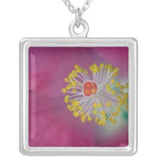 Close-up of Hibiscus flower stamen, Hibiscus Square Pendant Necklace
