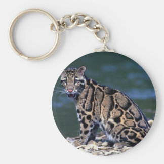 Clouded Leopard-eye contact Basic Round Button Key Ring