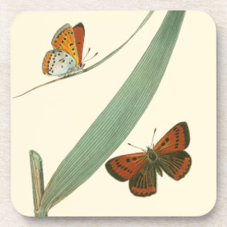 Colorful Butterflies Fluttering Around a Leaf Beverage Coasters