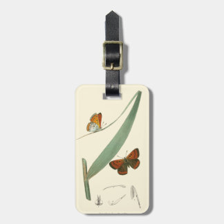 Colorful Butterflies Fluttering Around a Leaf Tag For Bags
