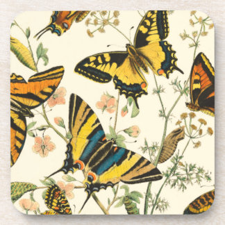 Colorful Gathering of Butterflies and Caterpillars Coasters