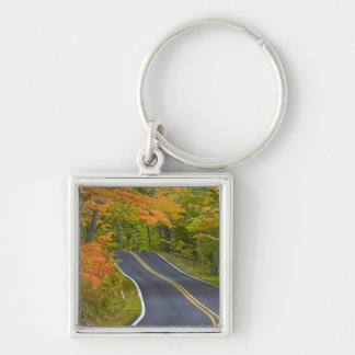Colorful maple trees in autumn line scenic Silver-Colored square key ring