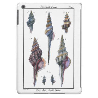 Colorful Seven Seashells Cover For iPad Air