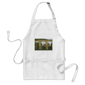 Colosseum Seen through the Arcades in Rome, Italy Standard Apron