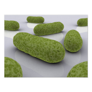 Conceptual Image Of Bacteria 1 Poster