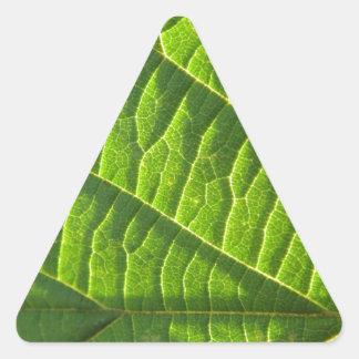 Cool green leafprint triangle sticker