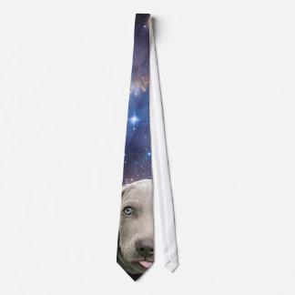 Cosmic Weimaraner in Space Tie