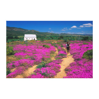 Cottage, Flowers And Girl, Near Kamieskroon Canvas Print