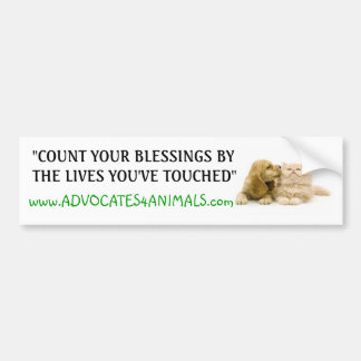 Count Your Blessings- BUMPER STICKER