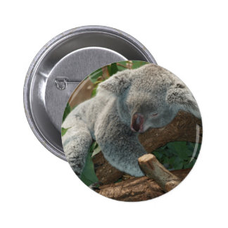 Cute Koala Bear Destiny Nature Aussi Outback 6 Cm Round Badge