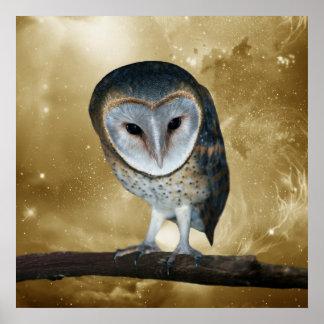 Cute little Barn Owl Poster
