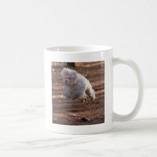Cute Maltese Dog Basic White Mug