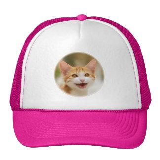 Cute smiling kitten funny cat meow cap