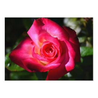 Dark Pink Rose Invitations