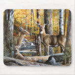 Deer In Woods Mousepad