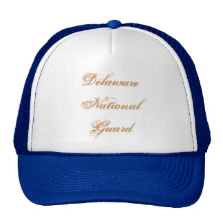Delaware National Guard Cap