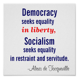 Democracy seeks equality in liberty poster