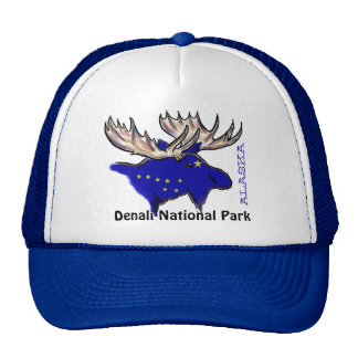 Denali National Park Alaska flag elk blue hat