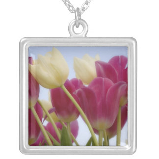 Detail of tulips. Credit as: Don Paulson / Square Pendant Necklace