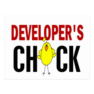 Developer's Chick 1 Postcard