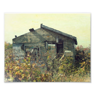 Distressed Collection Old Building Photo Print